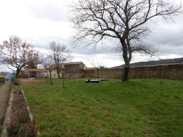 le jardin au fil des saisons - Février 2016