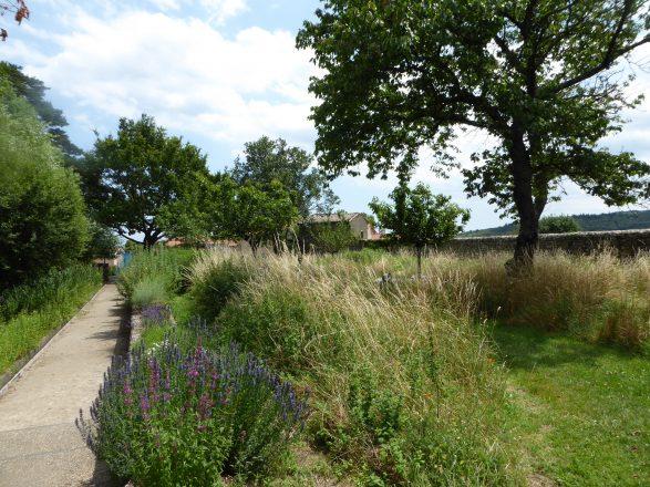 le jardin au fil des saisons - Juillet 2016