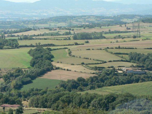 Plateau_des_Haies