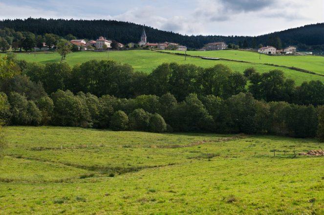 Saint-Regis-du-Coin- Le Bourg- Frange Ouest