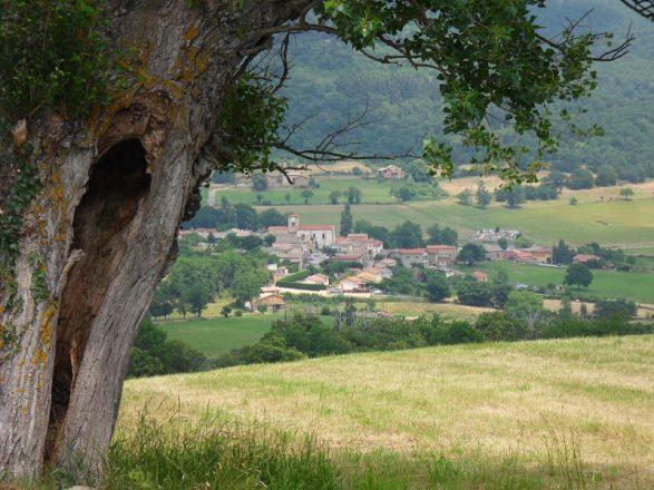 arbre creux et vue sur Chuyer
