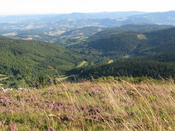 Vue de l'Oeillon vers la vallee de la Deome