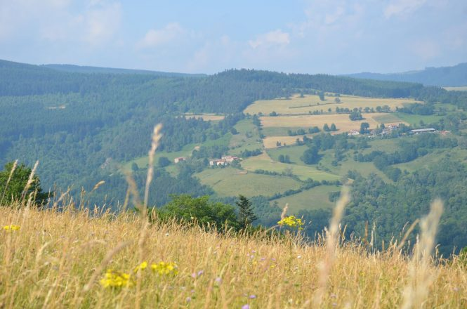 Vue sur Salvaris et Luzernod depuis le Planil