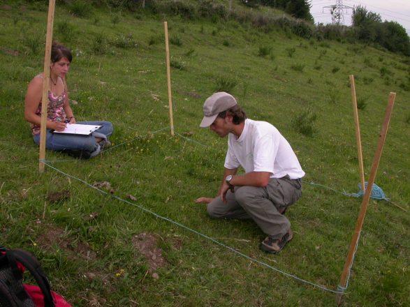 Suivi des vegetations sur le site Natura 2000