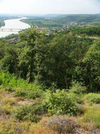 Vue sur la vallee du Rhone depuis la combe de Montelier