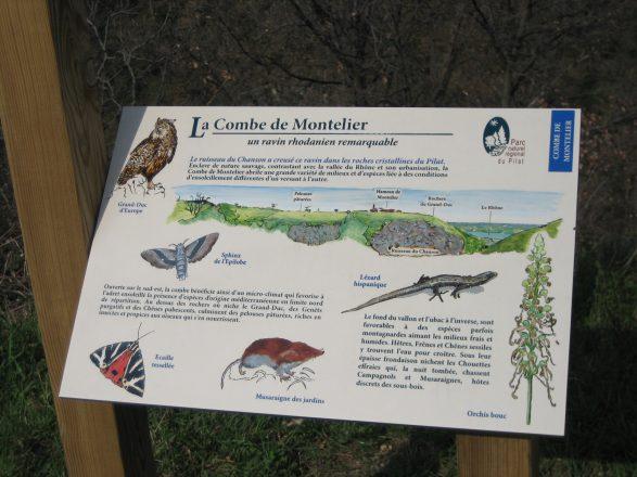 Observatoire naturaliste de la combe de Montelier