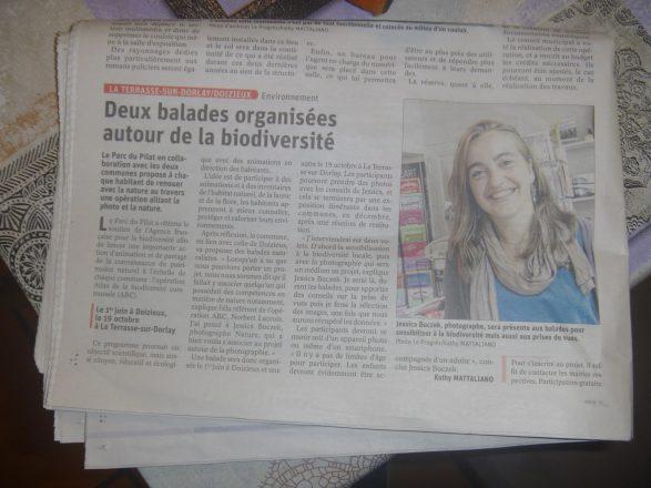 Article_la terrasse